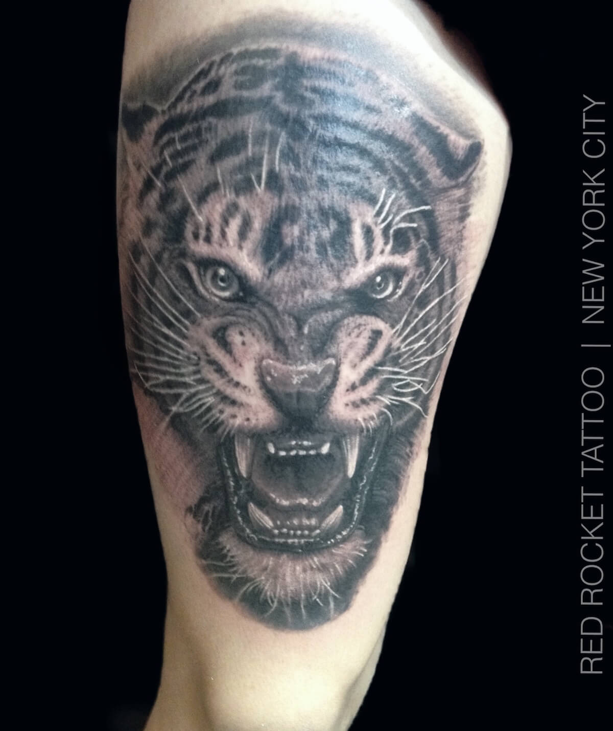 Realism Tiger Tattoo